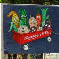 Moontime Farms